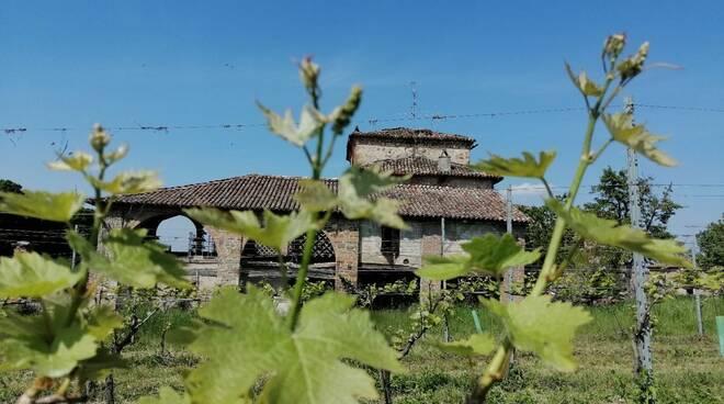 Castello di Agazzano Vini