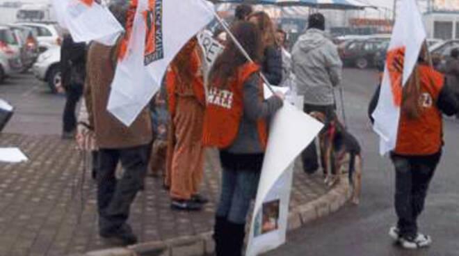 Manifestazione Lav