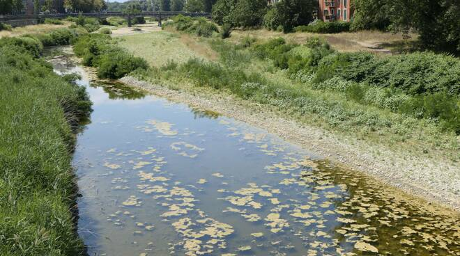 Il torrente Parma
